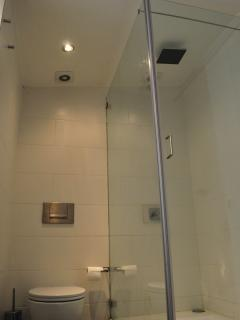 2nd Bathroom view of rainfall shower