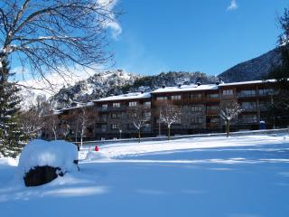 Andorra - Self catered apartment up to 7 people, L'aldosa