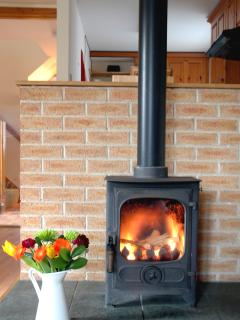 the Barn - woodburning stove