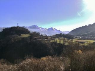 Terrafirma's View.