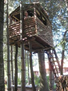 Tree house for young adventurers