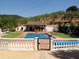 Charming villa set in a beautiful olive grove, Coslada