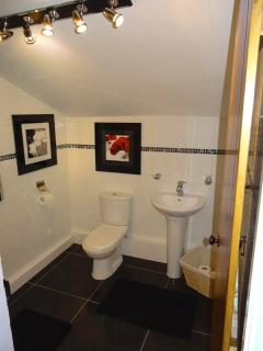 Downstairs ensuite.