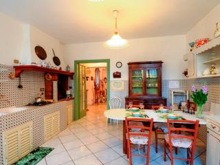 A VIEW OF THE LARGE EAT-IN KITCHEN WITH ACCESS TO THE GARDEN