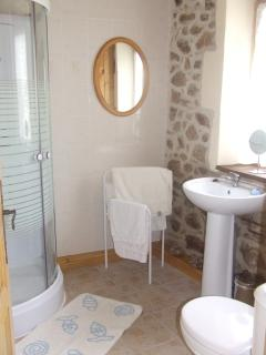 ground floor shower room with massage power shower