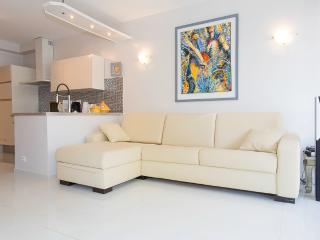 Renovated 2 bedrooms 323, Cannes