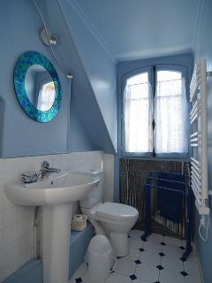 SDB avec douche , wc et fenetre  rare à Paris 1/2