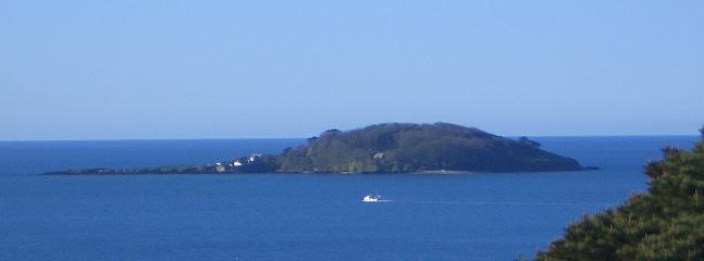 View of Looe Island from Highwood