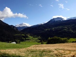 Beautiful and sunny apartment near Lenzerheide