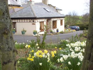Southmede Cottage in Village at the Coast.