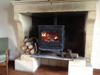 Wood Burner sat in Large stone fireplace