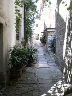 Typical Istrian Hilltop village scene