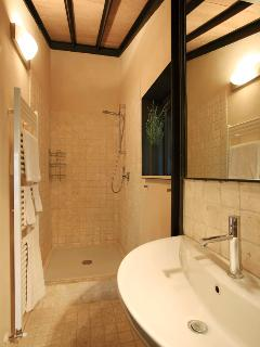 Smart car bathroom with oversized shower