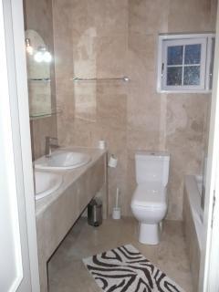 Downstairs marble bathroom