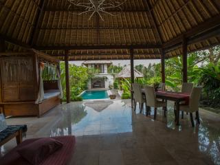 Main Lounge - tropical living