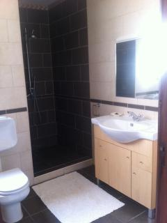Downstairs bathroom with open shower and bath