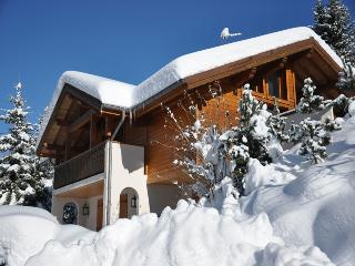 Au Gre du Temps - Beautiful 4 Bedroom Chalet very close to slopes