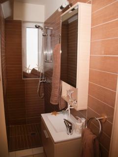 En suite  shower room (main floor)