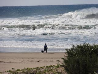 Spectacular surf....