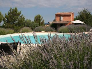 Athentical cabanon in the vineyards in Provence, Mazan