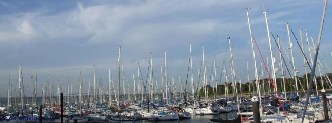 The Marina - See Q!