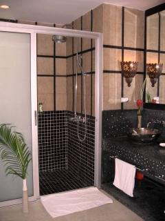 Master bathroom walk-in shower-enormous!