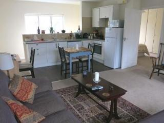 Well equipped kitchen with washer/dryer - dining table extends to seat four