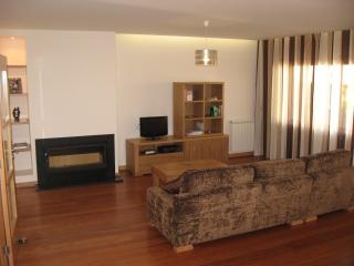 Lounge, showing TV unit and woodfire