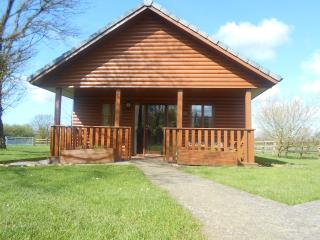 Swans Rest holiday cottages - Ladybird Lodge