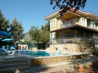 GLV-502 5 Bedroom Holiday Villa in Ovacik Oludeniz