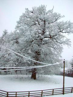 Copgrove in the winter