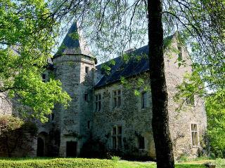 Chateau de la Chance, Faye-d'Anjou