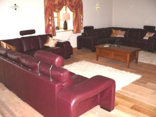 Leather sofas with seating for 16