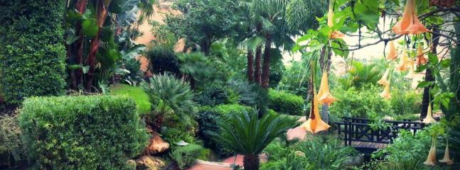 Award winning tropical garden