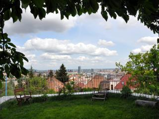 panoramatic view from green roof of apartment