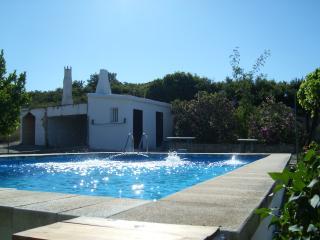 Pool and Paellero