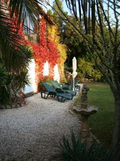 The garden in Autumn