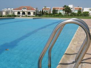 Your Large Pool, overlooked by apartment