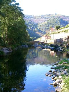 Quinta de Recião and Varosa river