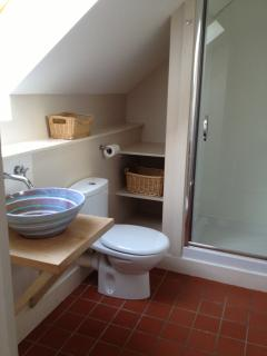 Bathroom with shower, interesting sink which made its way from Barbados.