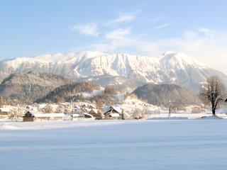 Winter View from the Slovenia Holiday Home