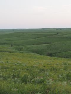 Typical view of the Flint Hills from the road east of Matfield Green