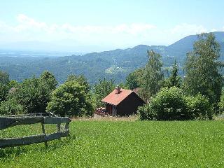 Traditional Alpine chalet with stunning views, Kamnik