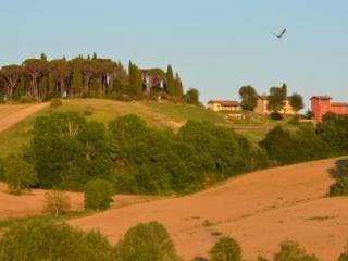Villa and cottage in Umbria, Citta di Castello