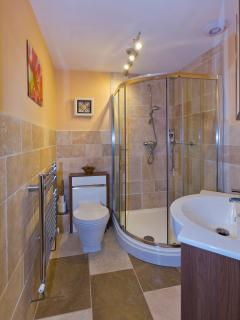 Downstairs Bathroom with large quadrant shower