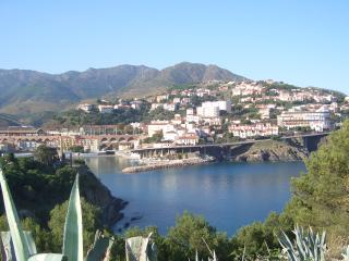 Aircon villa with pool - free 270 degree views of the Mediterranean and Pyrenees