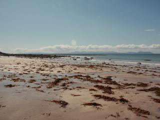 The beach at Peterburn