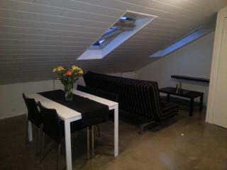 Luxury Penthouse Down Town, Reikiavik