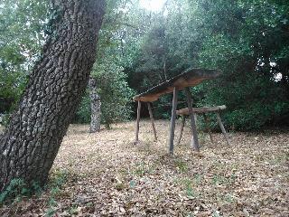 Immersa nel bosco ti regalerà il relax che cercavi