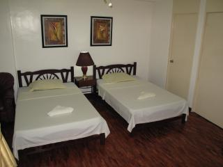 Large Twin Bed Serviced Apt. Makati Ave. (1103)